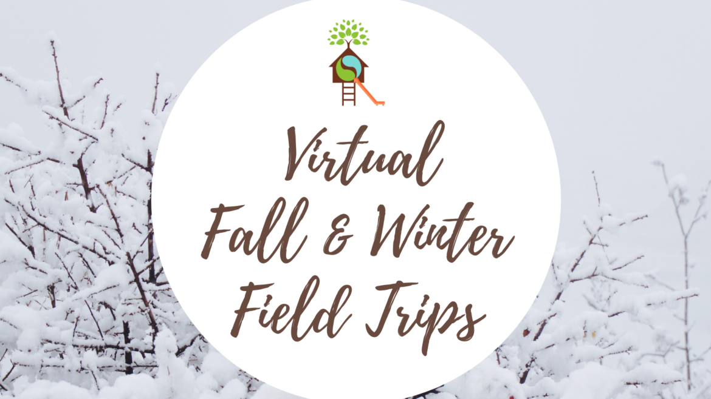 Fall & Winter 2020 Virtual Field Trips