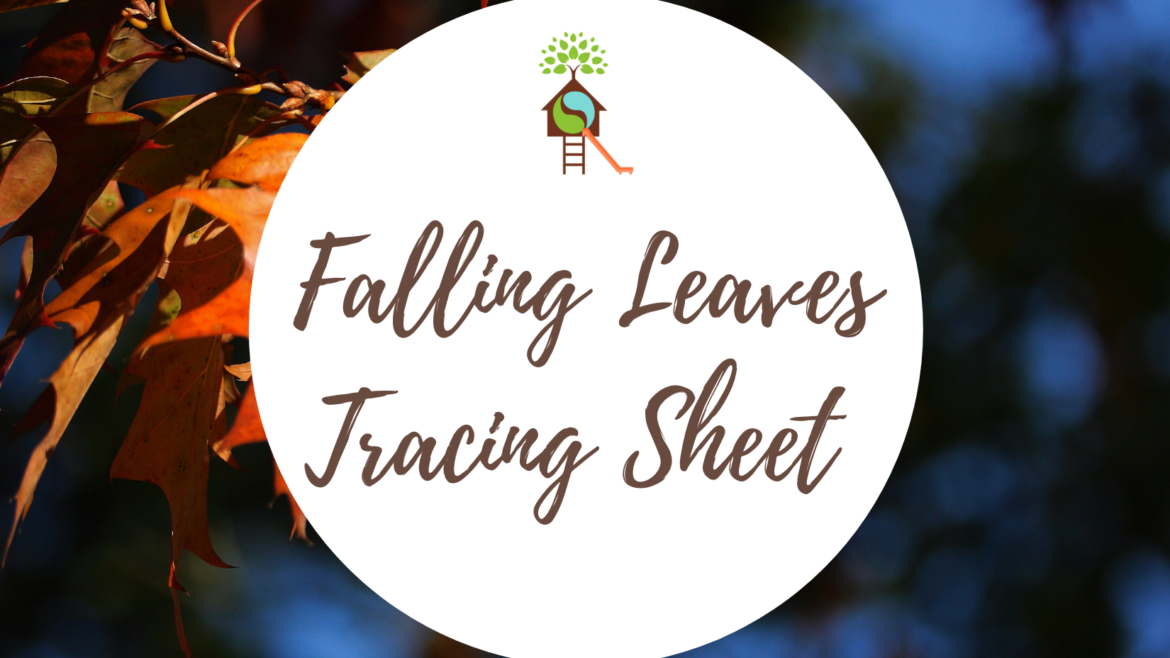 Falling Leaves Tracing Practice