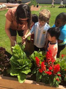 4K children gardening