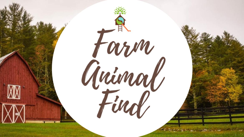 Farm Animal Find