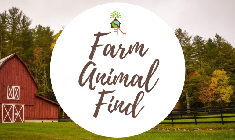 Farm Animal Find