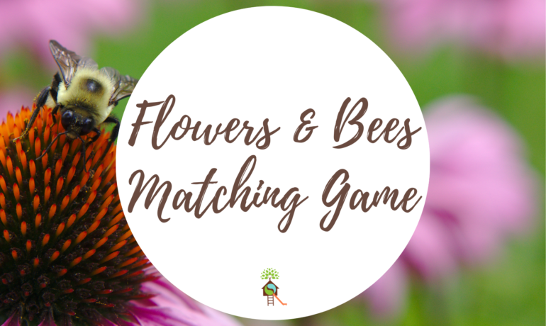 Flowers & Bees Matching Game